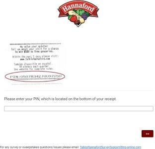 TalktoHannaFord survey page